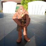 Figurine StarWars : star wars figurine  clone trooper wookie warrio